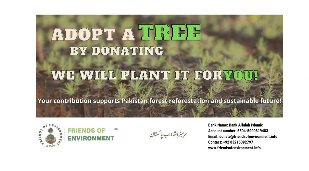 Friends Of Environment appeals for donation of plants